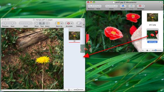 将pic2.jpg拖入merge.pdf中